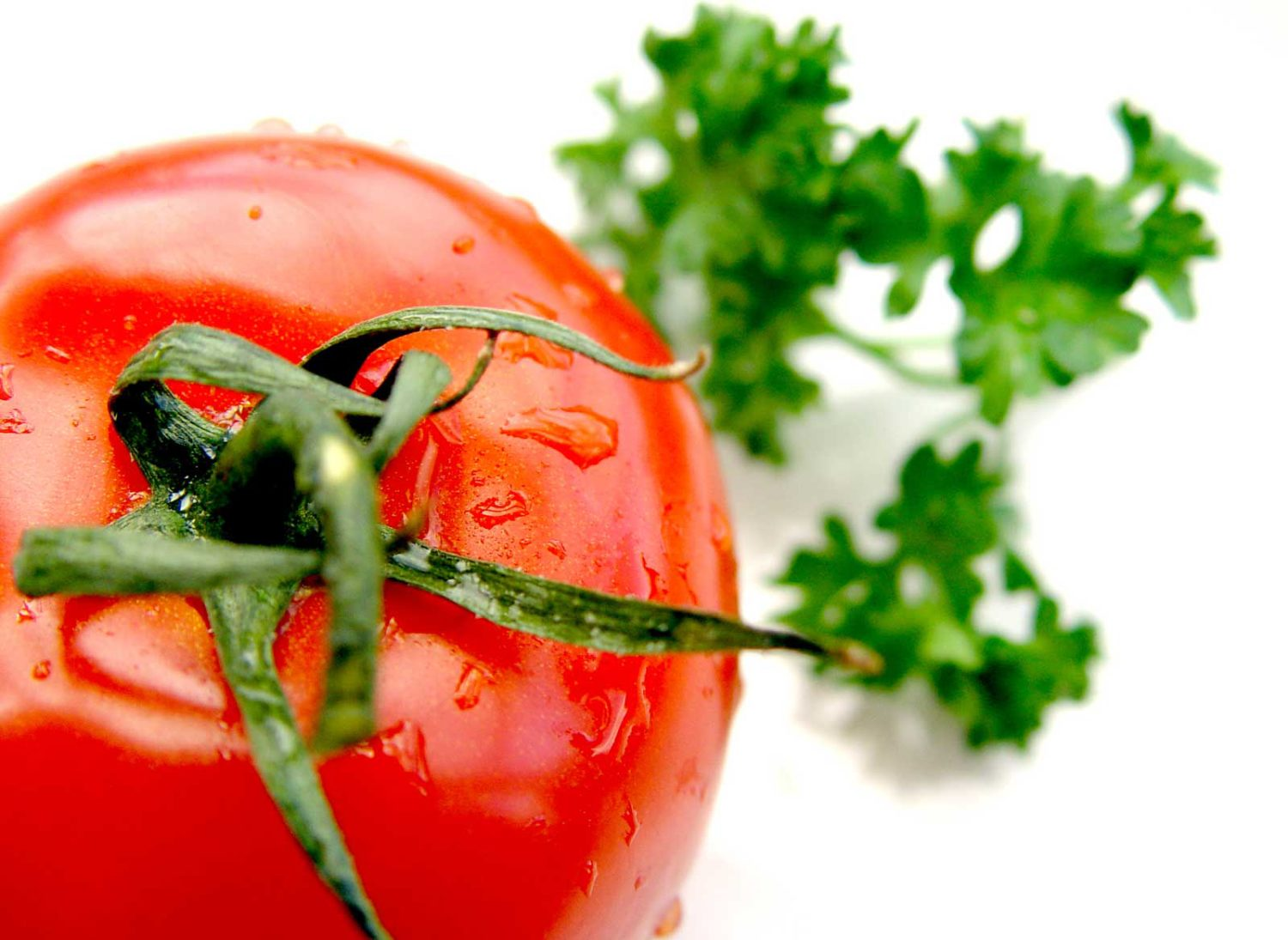 cropped-tomato_and_parsley_1600x1200-1.jpg
